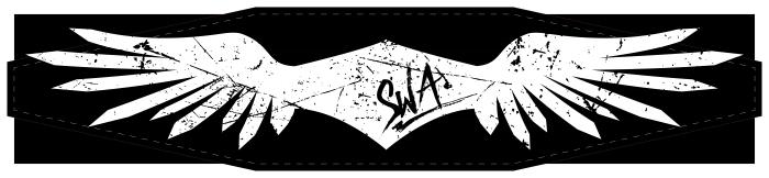 swa-headband-idea